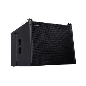 SKYTONE VERA S18 18 Line Array Passive Subwoofer